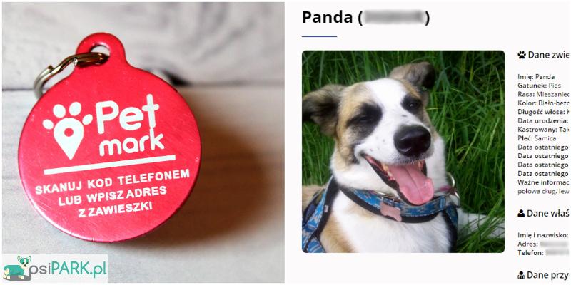 Zawieszka Petmark i profil internetowy Pandy