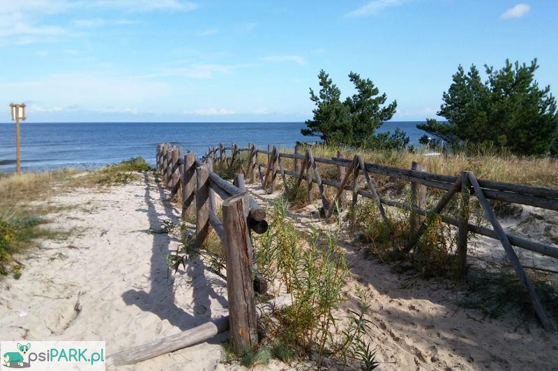 Plaże dla psów Dębki, Białogóra, Karwieńskie Błoto Drugie