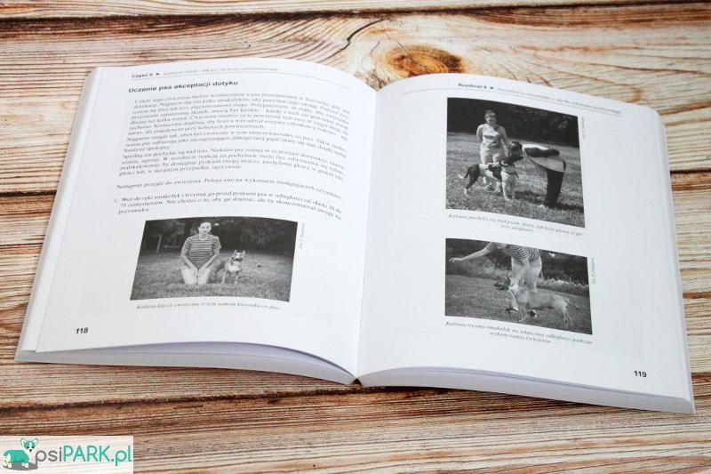 Pozytywne szkolenie psów dla żółtodziobów. Pamela Dennison